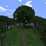 Mangrove1_244484