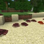 crab-625x326