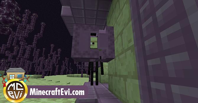 minecraft-evi12