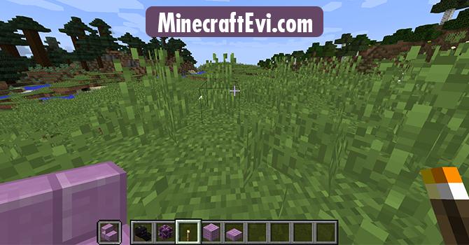 minecraft-evi3